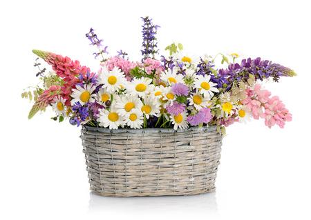 fiori di campo: cesto con fiori di campo Archivio Fotografico