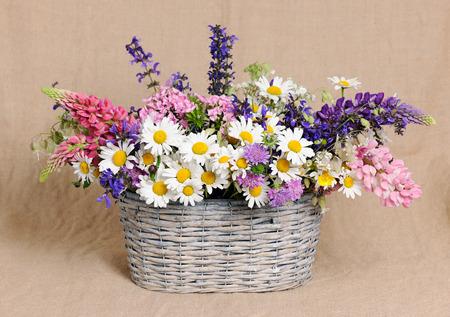 fleurs des champs: panier avec des fleurs sauvages Banque d'images