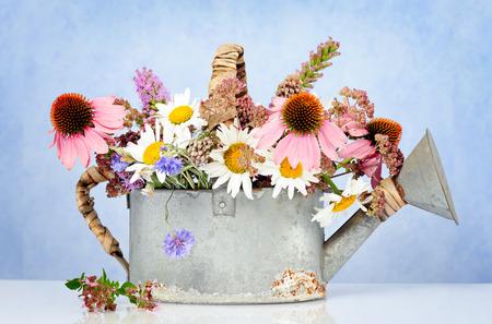 fleurs des champs: arrosoir avec des fleurs sauvages