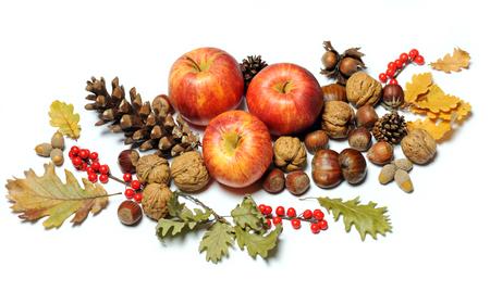 composition of autumn fruits