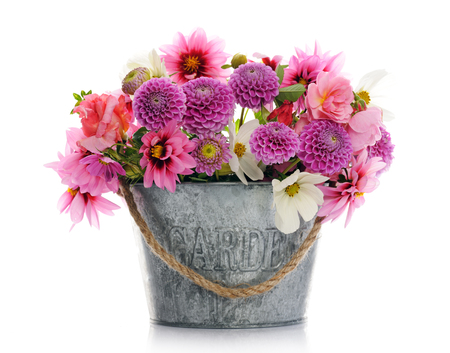 flowers in vase: beautiful flowers Stock Photo