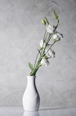 beautiful flowers in white vase
