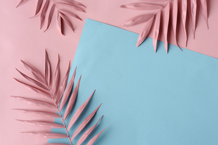 arrangement of pink palm leaves and colored paper Foto de archivo - 121676729