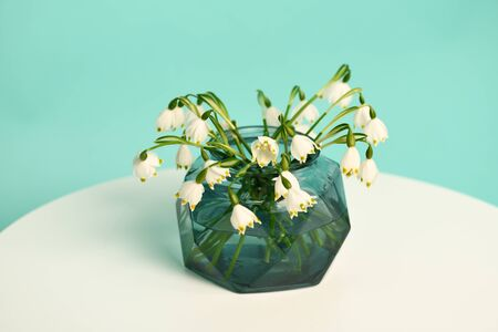 Bouquet of first spring flowers on light green background