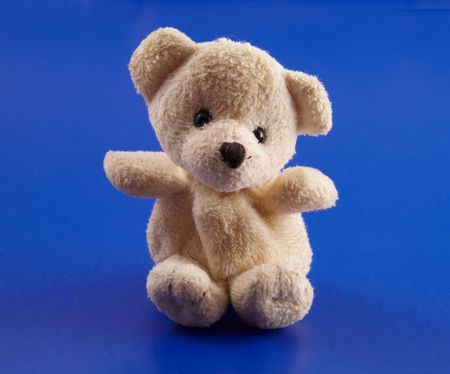 playthings: Teddy bear on a blue background
