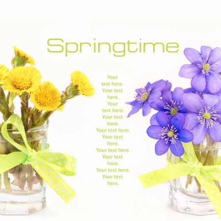 Springtime Stock Photo - 9354522