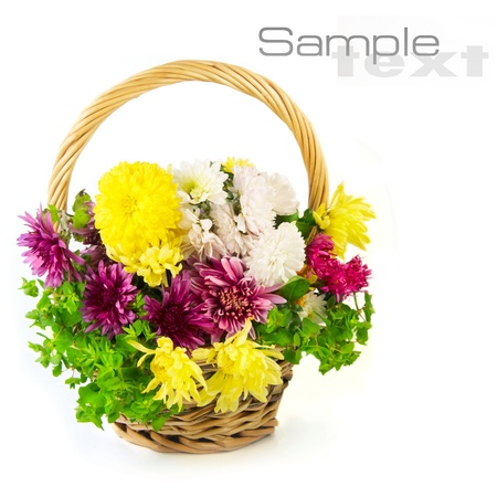 flowers in a basket  Stock Photo - 11163795