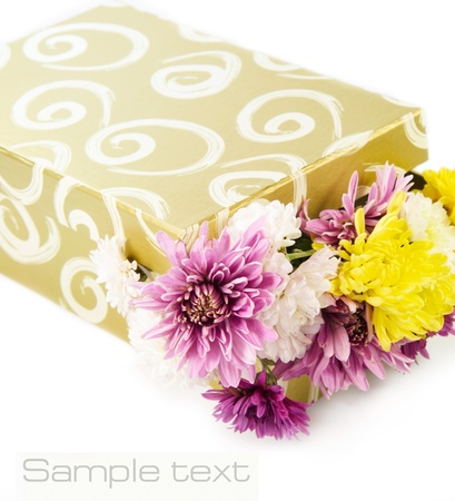 Beautiful flowers in a gift box  photo
