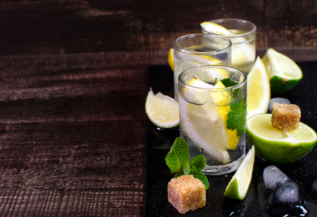 Fresh tonic water in the glass. With lemon, mint and lime. On a wooden surface.