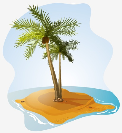 palm island  Illustration