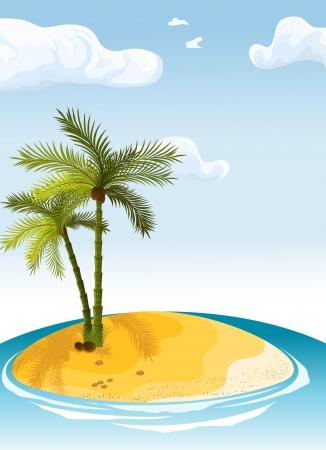 palm island  일러스트