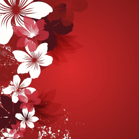 Red background with flowers Vector