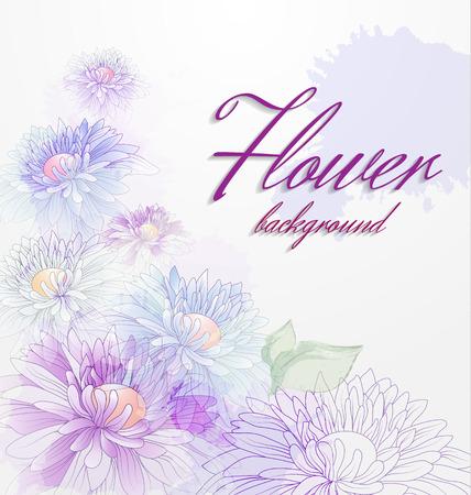 꽃 배경 국화와 투명 요소