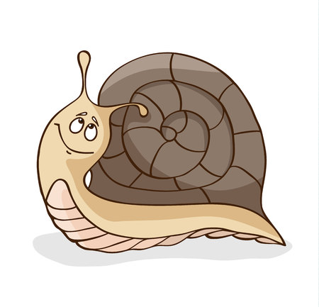 Snail isolated on white background Illustration