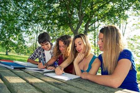 Teeneger students working together at park, Italy Stock Photo - 14241982