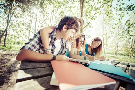 Teeneger students working together at park, Italy Stock Photo - 16167388