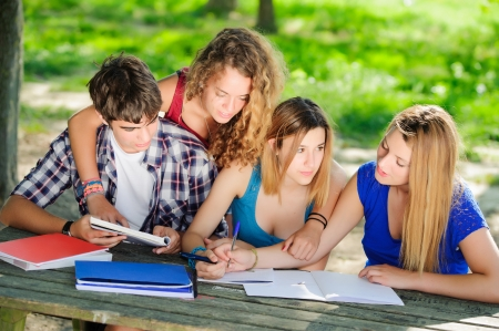 Teeneger students working together at park, Italy Stock Photo - 18206506