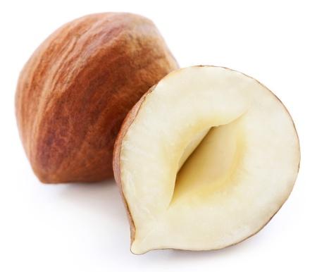 filbert: Filbert   hazelnut   isolated on white Stock Photo