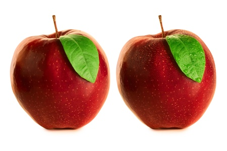 Apples wet and dry Stock Photo - 12425500