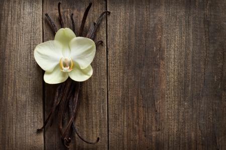 flor de vainilla: Palitos de vainilla y flor en el fondo de madera