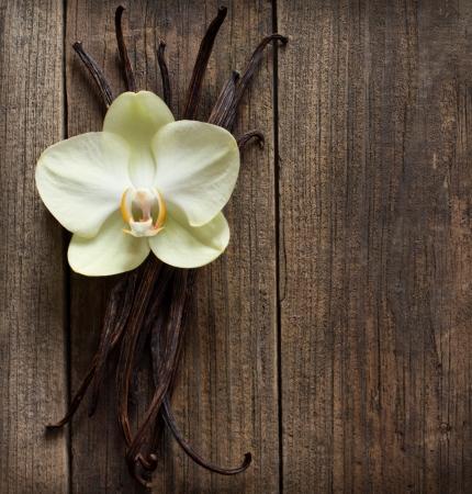 flor de vainilla: Palitos de vainilla y flores en el fondo de madera