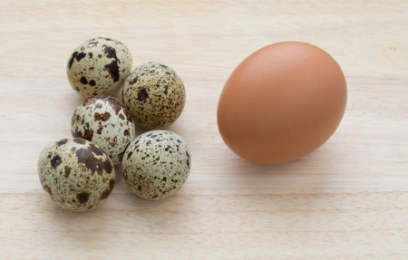 equals: Five quail eggs equals one chicken egg Stock Photo