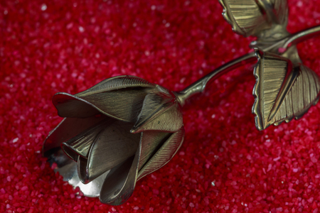 february 1: Metal rose on a background for holiday greetings