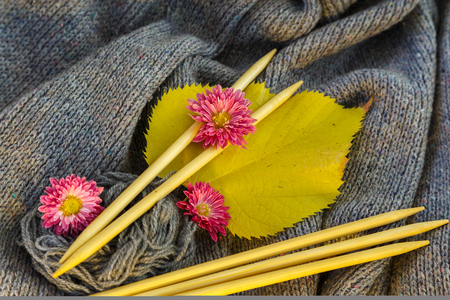 background of knitted gray linen of goats wool made with knitting needles or on a knitting machine laid in big waves with wooden knitting needles, yellow aspen leaf and red chrysanthemum flower.
