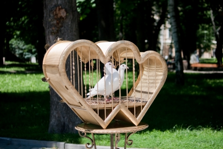 Dove and Heart - Symbols of Love