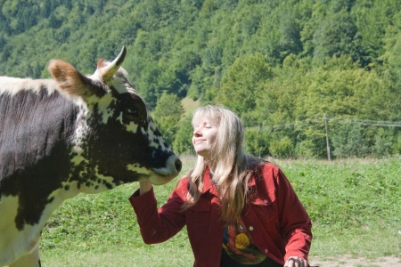 Young woman feeding a cow photo