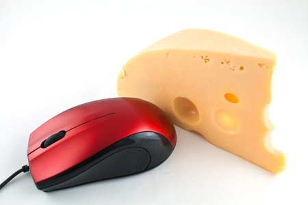 Computer mouse also loves cheese photo