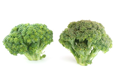 two broccoli Stock Photo - 16756319