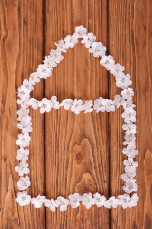 house of white flowers of apricot on of wooden board photo