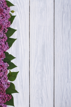 Flower frame of lilac on a wooden board photo