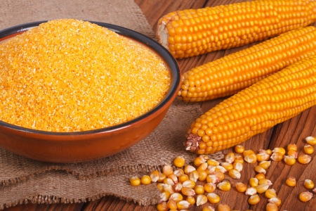 Corn groats in a bowl, whole grain and cob on a wooden table