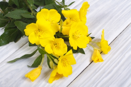Beautiful bouquet of yellow flowers oenothera on a wooden table