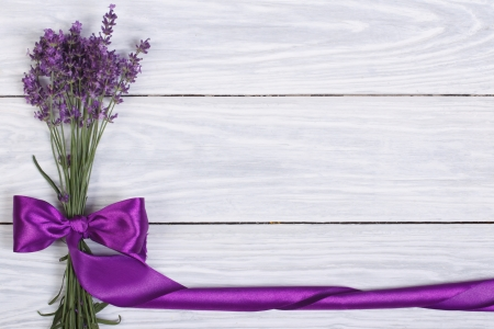 lavandula: floral frame from flowers of lavender and purple ribbon