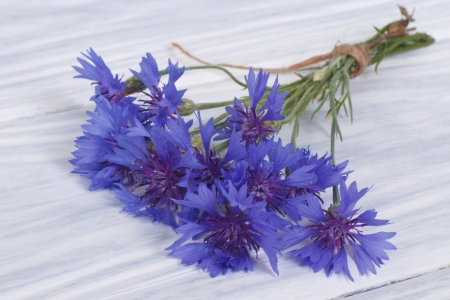 Wild flowers of the field cornflowers on the table photo