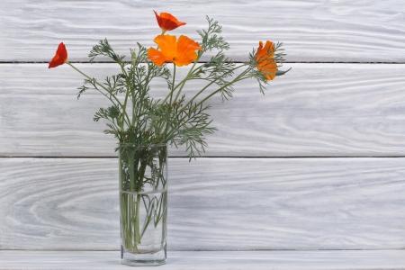 beautiful bouquet of orange flowers eshsholtsiya in a glass vase photo