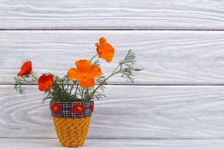beautiful bouquet of orange eshsholtsiya flowers in a vase photo