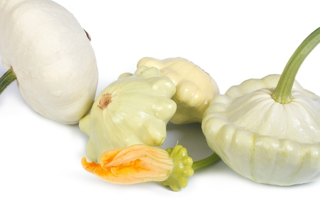 cymbling: patty pan squash with a flower isolated on white background Stock Photo