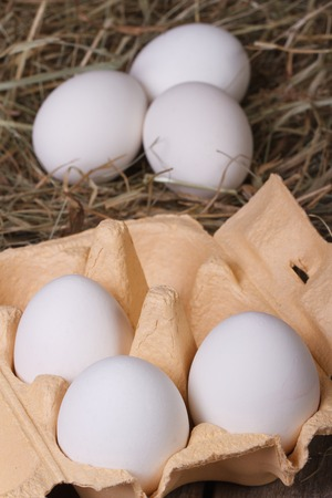 white chicken eggs in a tray and a hay closeup. vertical 