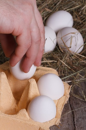 Hand man puts all his eggs in a tray closeup  photo