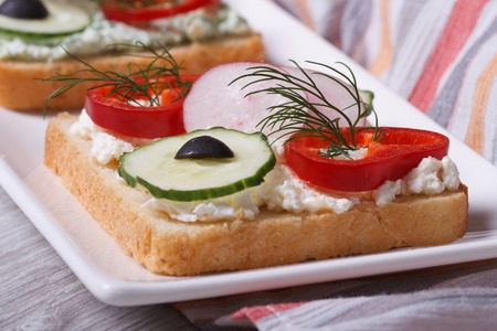 delicious and healthy sandwich with vegetables and soft cheese closeup on a white plate. horizontal  photo