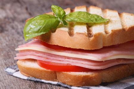 Delicious toasted toast with ham, cheese tomatoes on the table closeup horizontal  photo