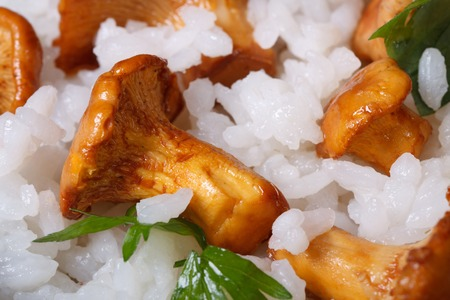 Background of rice with mushrooms chanterelles and parsley macro horizontal   photo