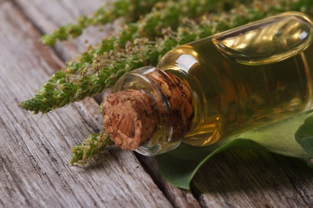 Extract of plantain in a glass bottle on a wooden table