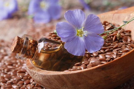 brown flax: flax oil in a glass bottle, flowers and seeds in a wooden spoon macro
