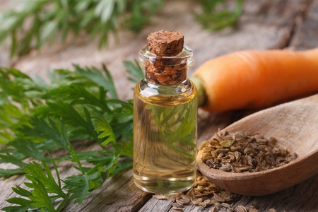 The essential oil of carrot seeds in a glass bottle on a wooden table.
