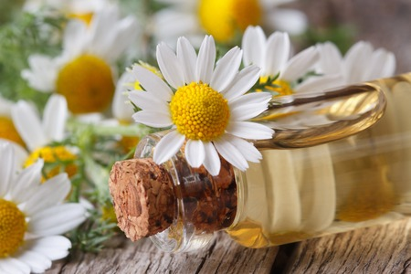 medical herbs: massage oil in the glass bottle on the background of camomile flowers macro on wooden table